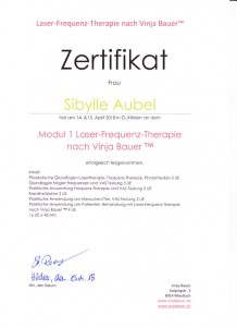 Laser-Frequenz-Therapie nach Vinja Bauer™ Modull 1