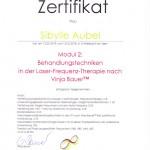 Laser-Frequenz-Therapie nach Vinja Bauer™ Modul 2