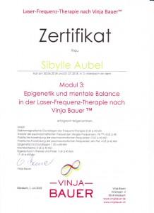Laser-Frequenz-Therapie nach Vinja Bauer™ Modul 3